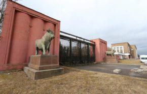 В Петербурге на месте бывшего мясокомбината могут открыть парк